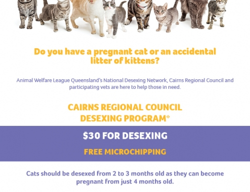 Cairns Regional Council Cooperative Desexing Program